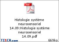 Ronéo 1 - Histologie du système neurosensoriel (I) - Boudard - 14.09.16 01oxngp3