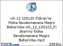vih 12 120123 Fidiran'ny filoha Ravalomanana Magro Behoririka