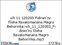 vih 11 120203 Fidiran'ny filoha Ravalomanana Magro Behoririka