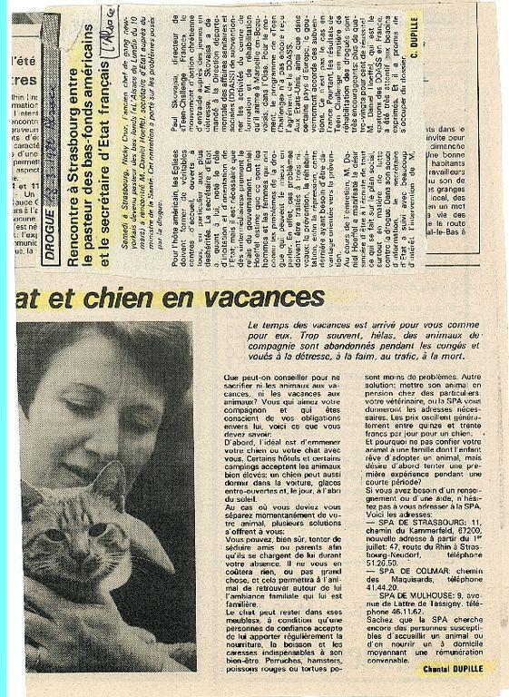 pour Ti1ca1 : cy Alsace chien vacances et N CRUZ annoncé1.jpg