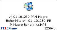vij 01 101230 PRM Magro Behoririka