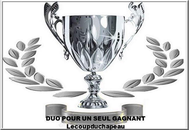 trophée DUO : trophée DUO.png